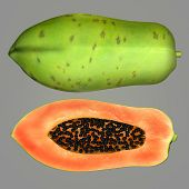 stock photo of pawpaw  - The papaya - JPG