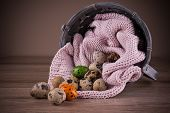 picture of quail egg  - Quail eggs and one orange green egg spilling out of basket with pink textile - JPG