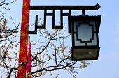 pic of lamp post  - A lamp on a post with flowering peach trees in the background in China - JPG