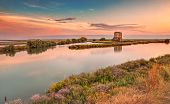 pic of ferrara  - landscape at sunset of the swamp with ruins of an old house  - JPG