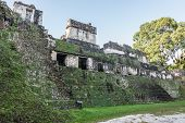 stock photo of mayan  - Mayan historic building at Tikal Jungle - JPG