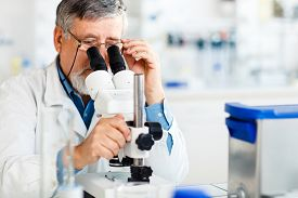 image of chromatography  - senior male researcher carrying out scientific research in a lab using a microscope  - JPG