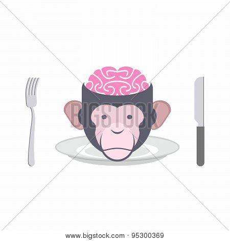 Monkey Brains prohibited dish of Oriental cuisines Chinese, Indonesian and African cuisines. Animal'
