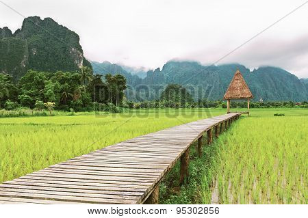 Wooden Gazebo And Rice Fields