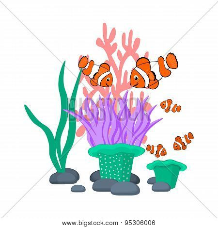 Sea anemone and clownfishes vector illustration