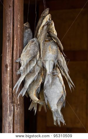 Hanging Dried Fish