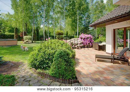 Garden At Summer Time