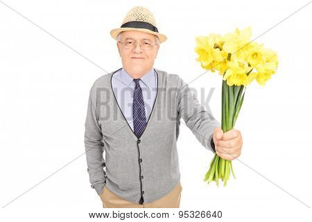 Thoughtful senior gentleman handing a bunch of yellow tulips towards the camera isolated on white background
