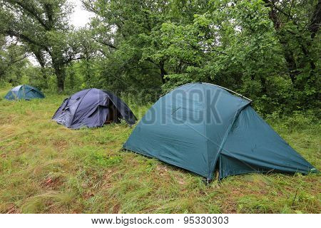 tourists tents in forest camp at rainy day