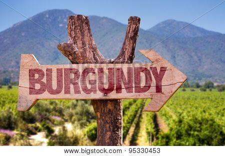 Burgundy wooden sign with winery background