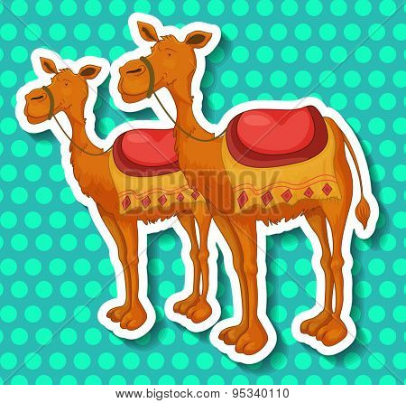 Stickers of two camels on a blue circular pattern background
