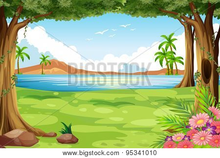 Scenery of a river with grass and trees