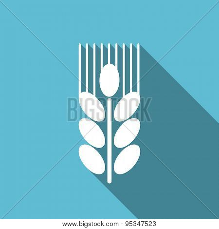 grain flat icon agriculture sign original modern design flat icon for web and mobile app with long shadow