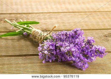 Lavender bunch  on wooden background