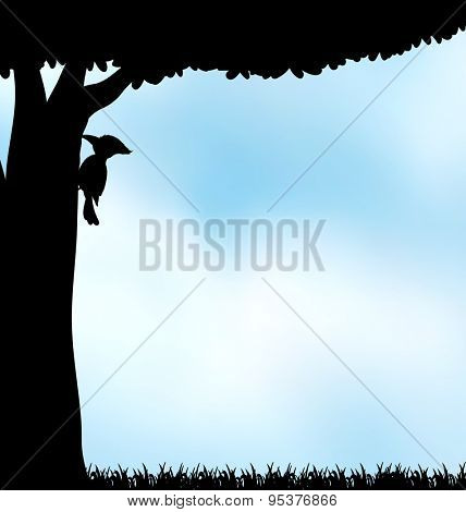 Silhouette woodpecker making hold on the tree