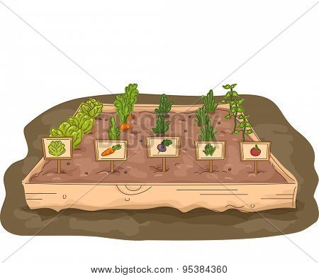 Illustration of a Garden with a Raised Box Marked with Labels
