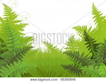Illustration of fern meadow background