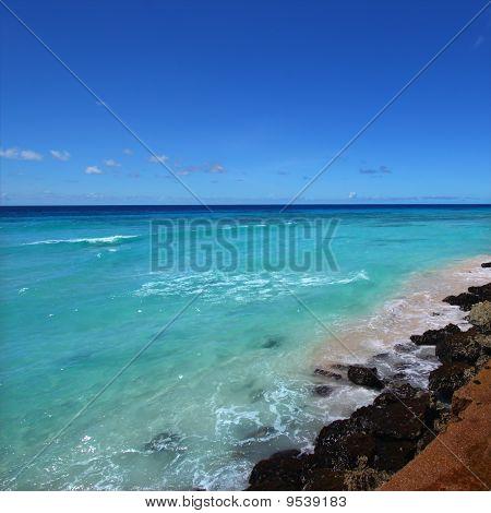 Rocky Coastline Of Barbados