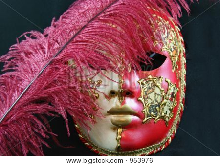 Venetian Mask And Feather