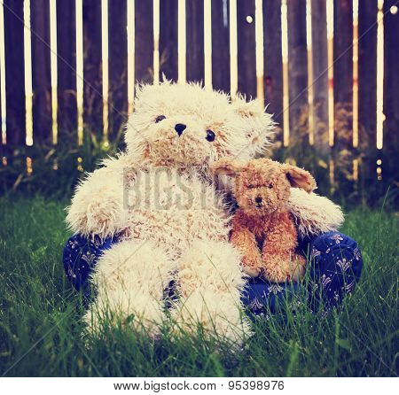 a teddy bear with his arm around a dog showing companionship and love toned with a retro vintage instagram filter app or action effect