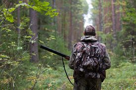 picture of hunter  - hunter walking with gun on the forest road - JPG