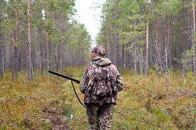 stock photo of hunter  - hunter walking with gun on the forest road - JPG