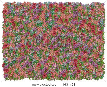 Colorific Floral Background.