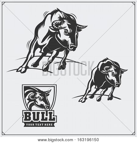 Raging bull. Vector emblems, labels and badges.