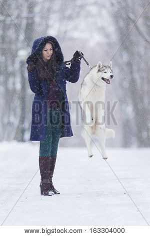 Positive Caucasian Woman Airing Her Husky Dog. Jumping In Winter Forest Outdoors. Vertical Image
