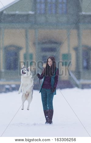 Portrait of Caucasian Brunette Woman Keeping Her Jumping Husky Dog on a Short Leash During a Stroll Outdoors. Vertical Shot