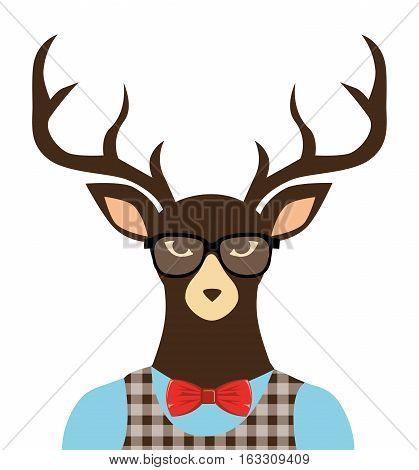 deer hipster dressed glasses vector illustration eps 10