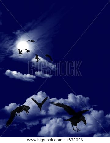 Crows Flock In A Moonlit Skyscape
