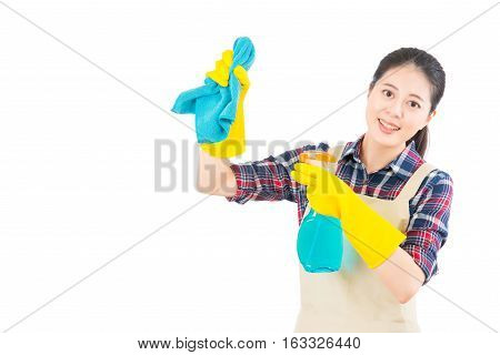 Housewife Cleaning Using The Rag And Spray