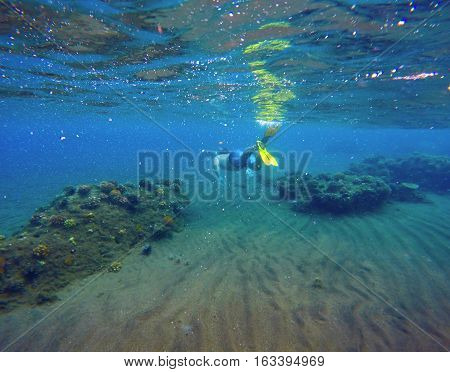 Underwater landscape with snorkeling man and coral reef. Sea bottom with sand and seaweeds. Clean ecosystem of tropical seaside. Vacation activity. Exotic nature background. Diving snorkel in fins