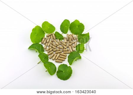 Heart shape of green Asiatic Pennywort (Centella asiatica Hydrocotyle umbellata L or Water pennywort ) and colorful pill on white background