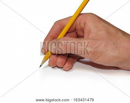 Hand holding a yellow wooden pencil isolated on a white background