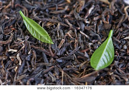black tea with leaf closeup