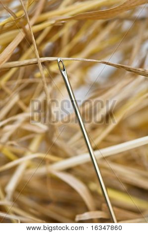 needle in hay stack closeup