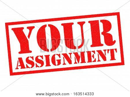 YOUR ASSIGNMENT red Rubber Stamp over a white background.