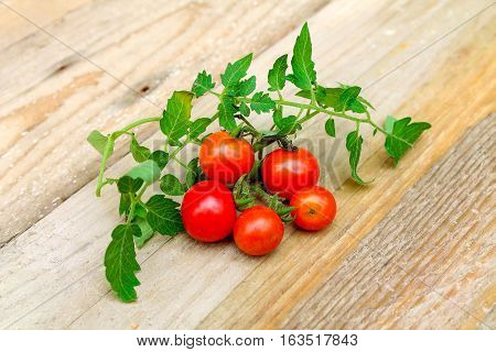 Fresh Cherry Tomatoes On The Wood Background