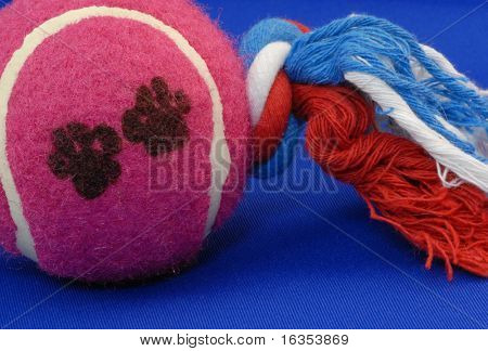 dog ball tug toy on blue background