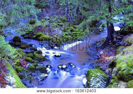 Two mystical small creeks combine in forest. Long exposure.