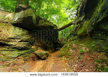 Falls Canyon is located in the woodlands of Turkey Run State Park in Indiana
