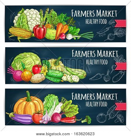 Vegetables sketch on banners with Farmers Market harvest ripe. Vector cabbage, cucumber, tomato and eggplant, kohlrabi, onion and corn, pumpkin and zucchini, radish and leek. Chalk sketched healthy food vegetables food on chalkboard