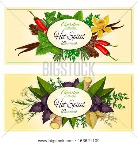 Hot Spices banners of spicy herb seasonings and herbal culinary condiments green basil, sage and bay leaf, red basil and rosemary, thyme and ginger, cinnamon and dill, vanilla and mint leaves, cumin, anise and oregano, chili pepper and tarragon