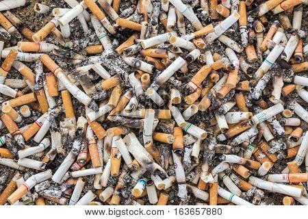 PHUKET THAILAND - DECEMBER 11 : Shot of dirty cigarettes butts in ashtray in Phuket on December 11 2016.