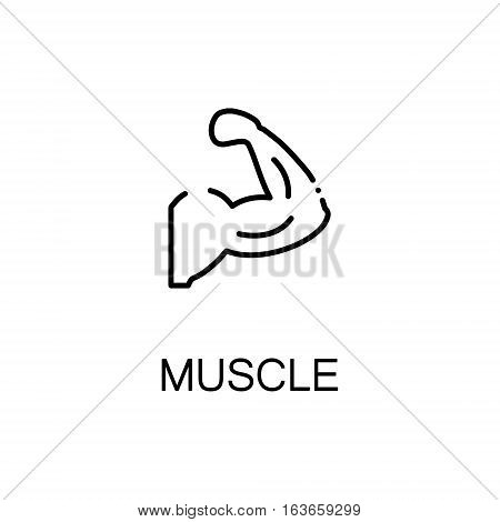 Muscle flat icon. Single high quality outline symbol of human body for web design or mobile app. Thin line signs of muscle for design logo, visit card, etc. Outline pictogram of muscle