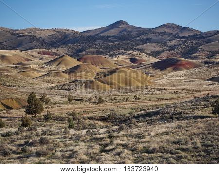 The uniquely colored hills in the Painted Hills Unit of the John Day Fossil Beds in Eastern Oregon with wild grasses and trees on a sunny Spring day.