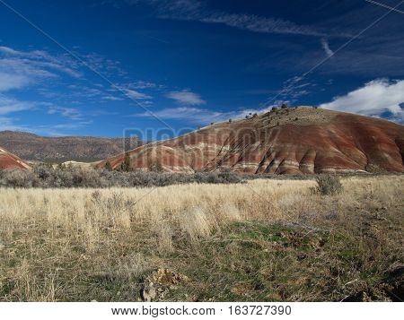 An area with wild grasses bushes and trees lead to a red rounded hill in the Painted Hills Unit of the John Day Fossil Beds in Eastern Oregon on a sunny Winter day.