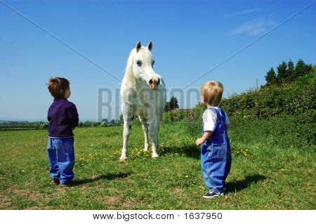 Toddlers And A Pony